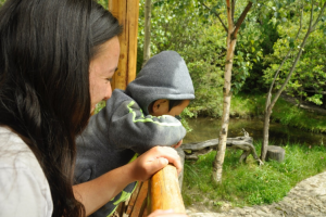 Erika Looking at Fish with Jack