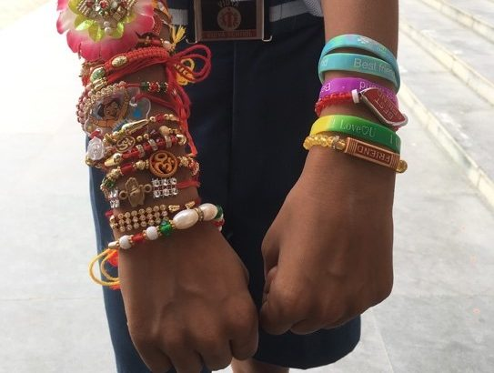 Colorful Rahki Bracelets