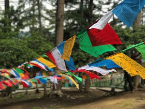 colorful prayer flags waving in the wind in front of trees