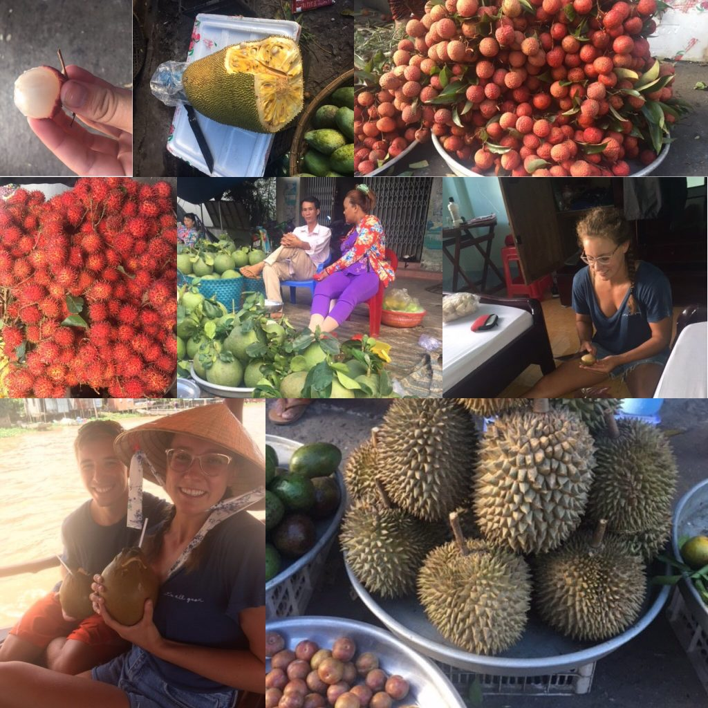 Photo Collage of fruit in Vietnam