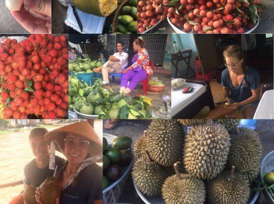 Photo Collage of fruit in Vietnam