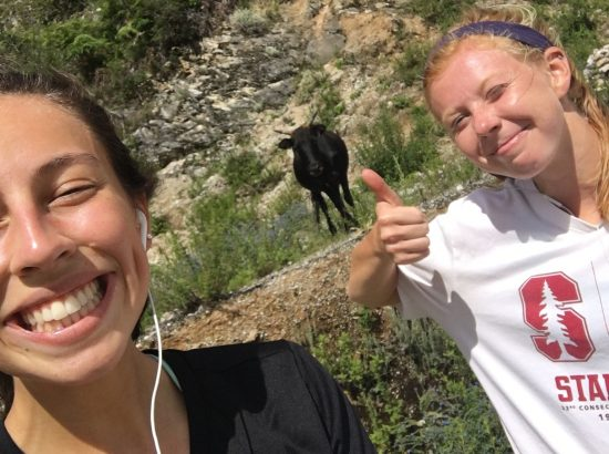 two women giving a thumbs up with a yak in the background