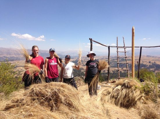 students at the top of mountain holding hay