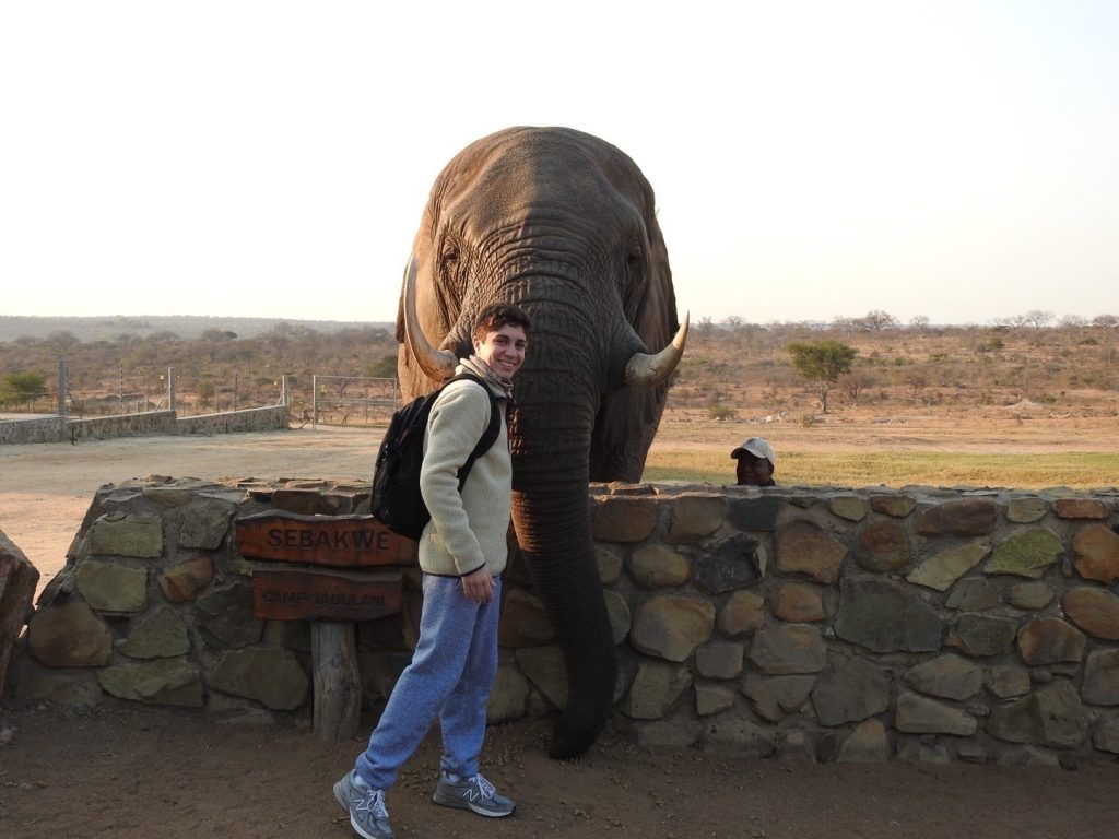 man standing with elephant